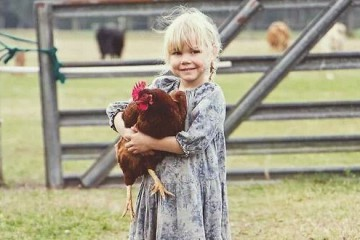 kind en kip
